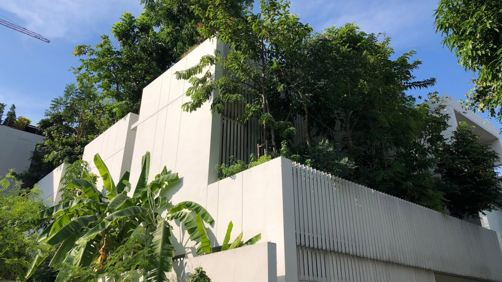 Shma Company designs Bangkok home for family and biodiverse forest of 120 trees