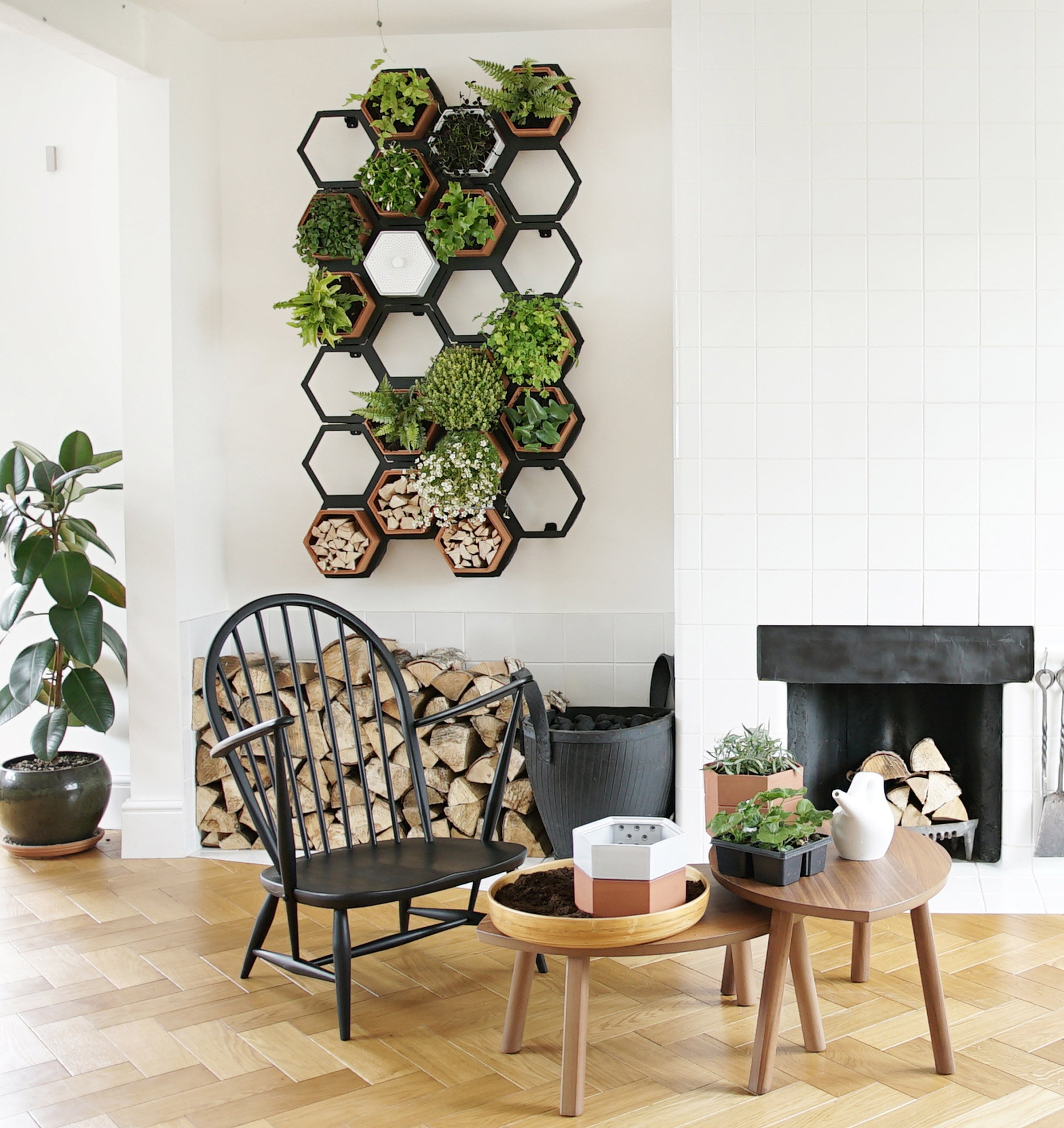 Horticus creates modular indoor living wall