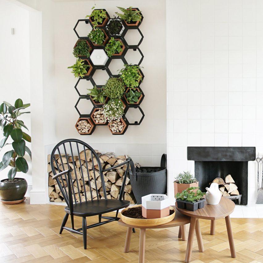Horticus creates modular indoor living wall