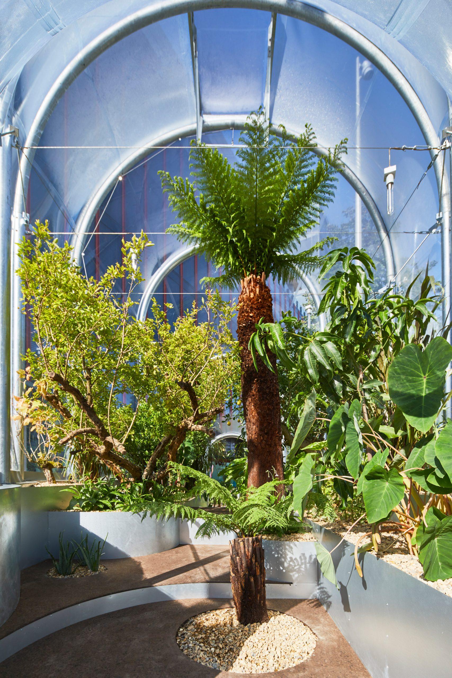 https://static.dezeen.com/uploads/2020/09/hothouse-studio-weave-climate-change-terrarium-london-design-festival_dezeen_2364_col_7-scaled.jpg