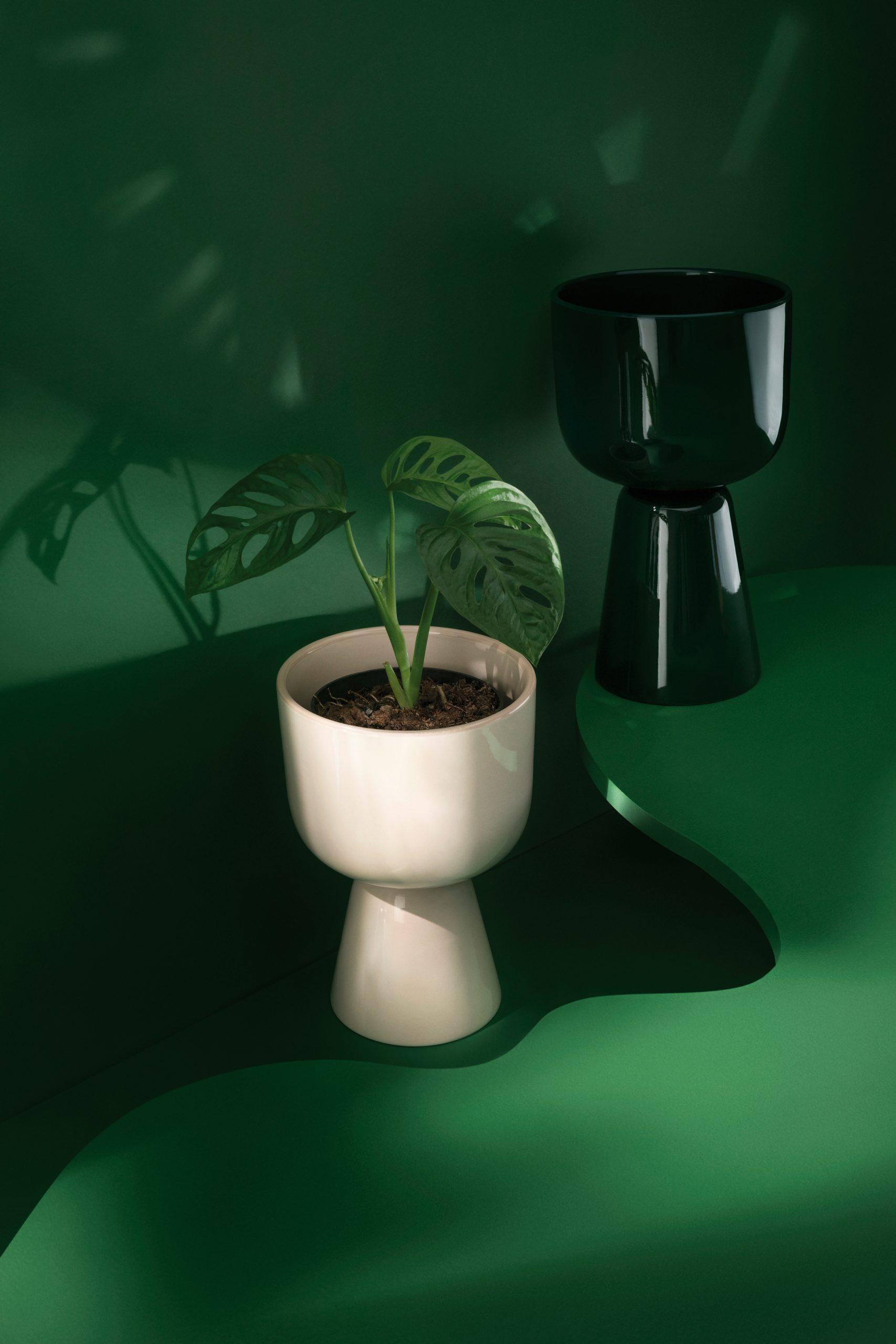 Nappula from Iittala for Dezeen x Planted