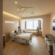 Children's hospital room with lion ceiling light by Integrated Field
