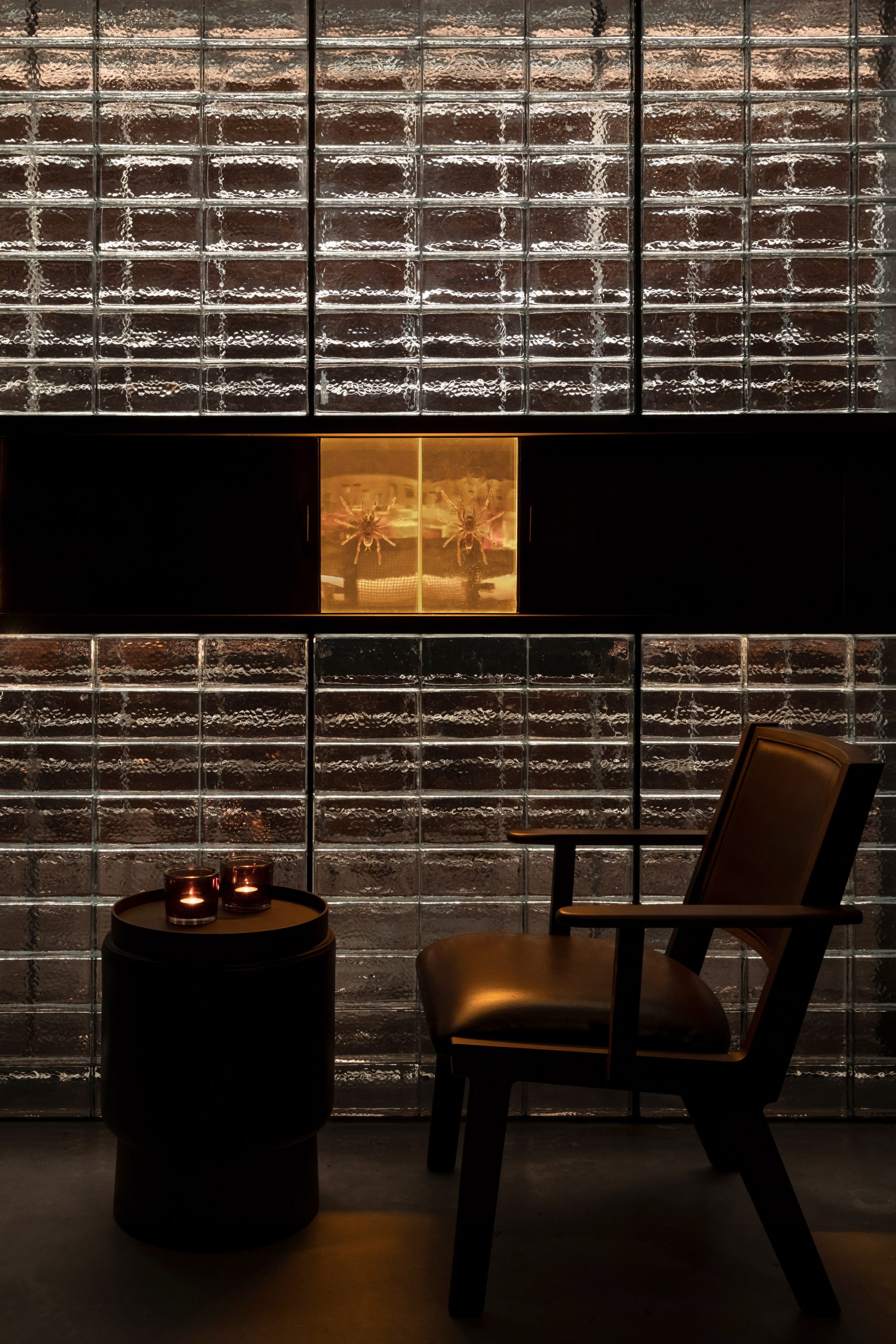 Glass wall contains preserved spiders in J Boroski bar in Shanghai by Atelier XY