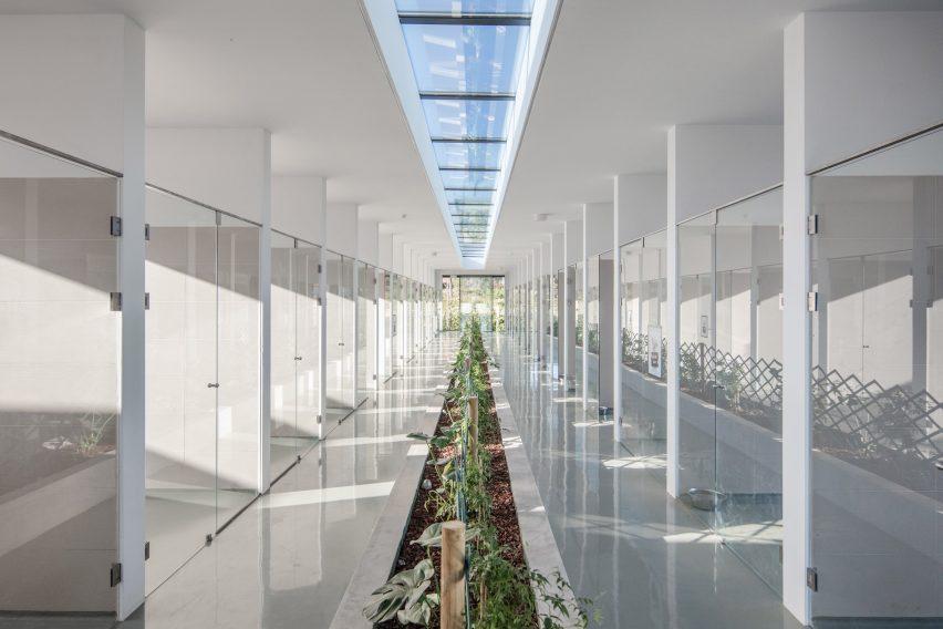 Indoor garden between kennels of Canine and feline hotel by Raulino Silva Arquitecto