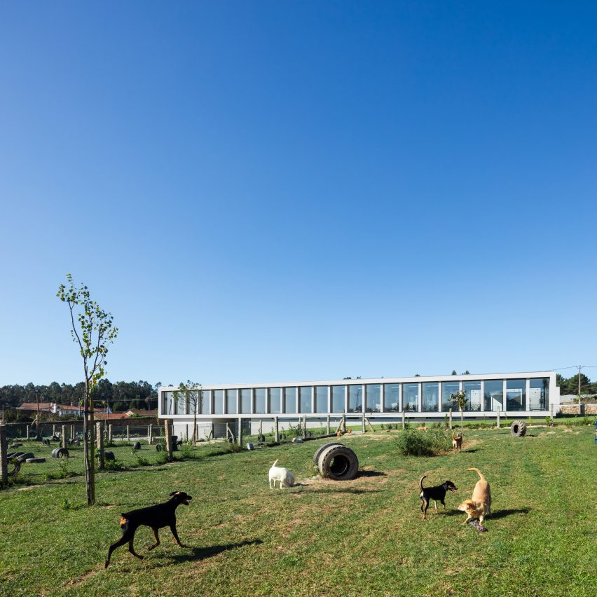 Canine and feline hotel by Raulino Silva Arquitecto