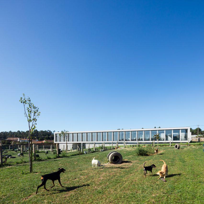 Hotel canino e felino de Raulino Silva Arquitecto