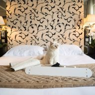 Choupette inspects Swing bed by LucyBalu before it is assembled