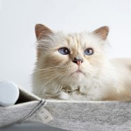 A cat bed launched in collaboration with Karl Lagerfeld's pet features in today's Dezeen Weekly newsletter