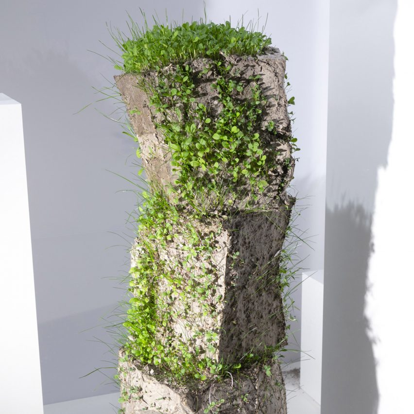 Designers explore our changing relationship with nature in Dezeen x DDW2020 talk