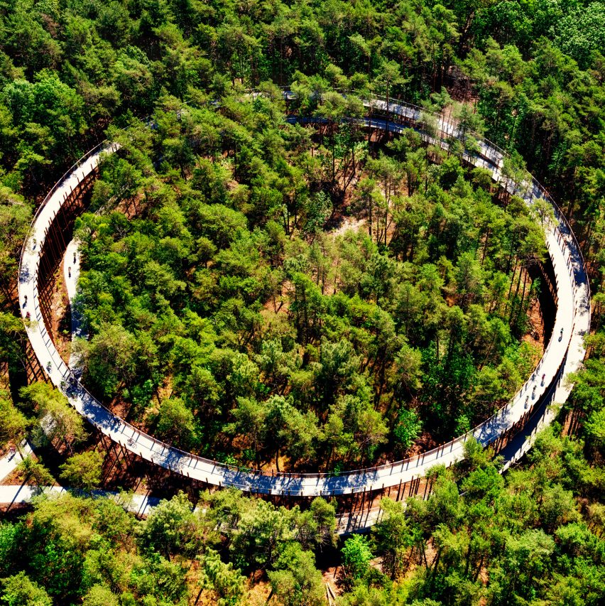 Raised circular cycling path gives 360-degree views of Belgium forest