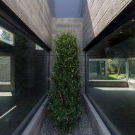 Greenery at Aptus Factory Showroom by Hooba Design Group