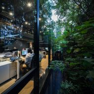 Trees outside of IDIN Architects Office in Bangkok, Thailand