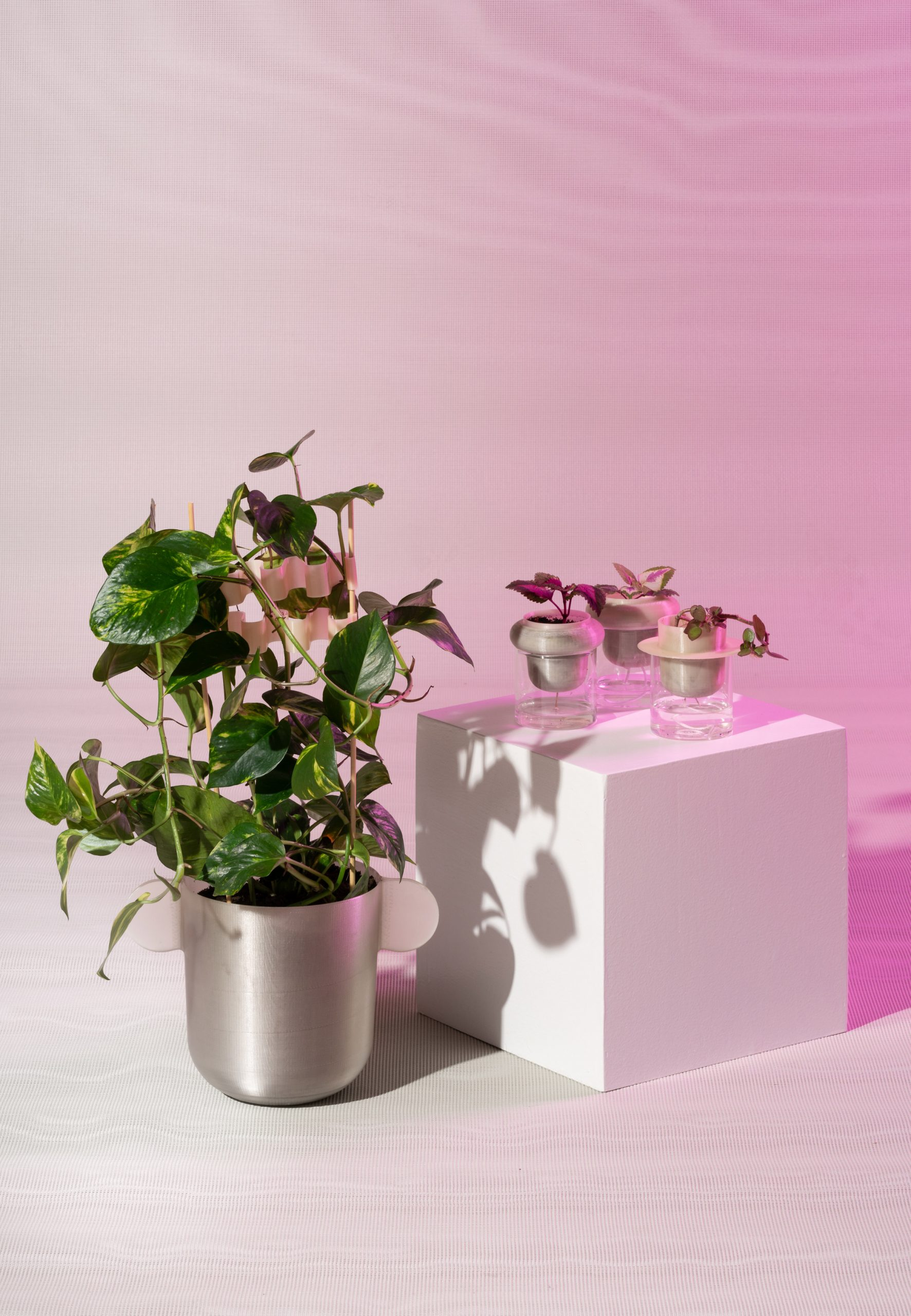 Plant pots and flower clips Metabolic Processes for Leftovers exhibition