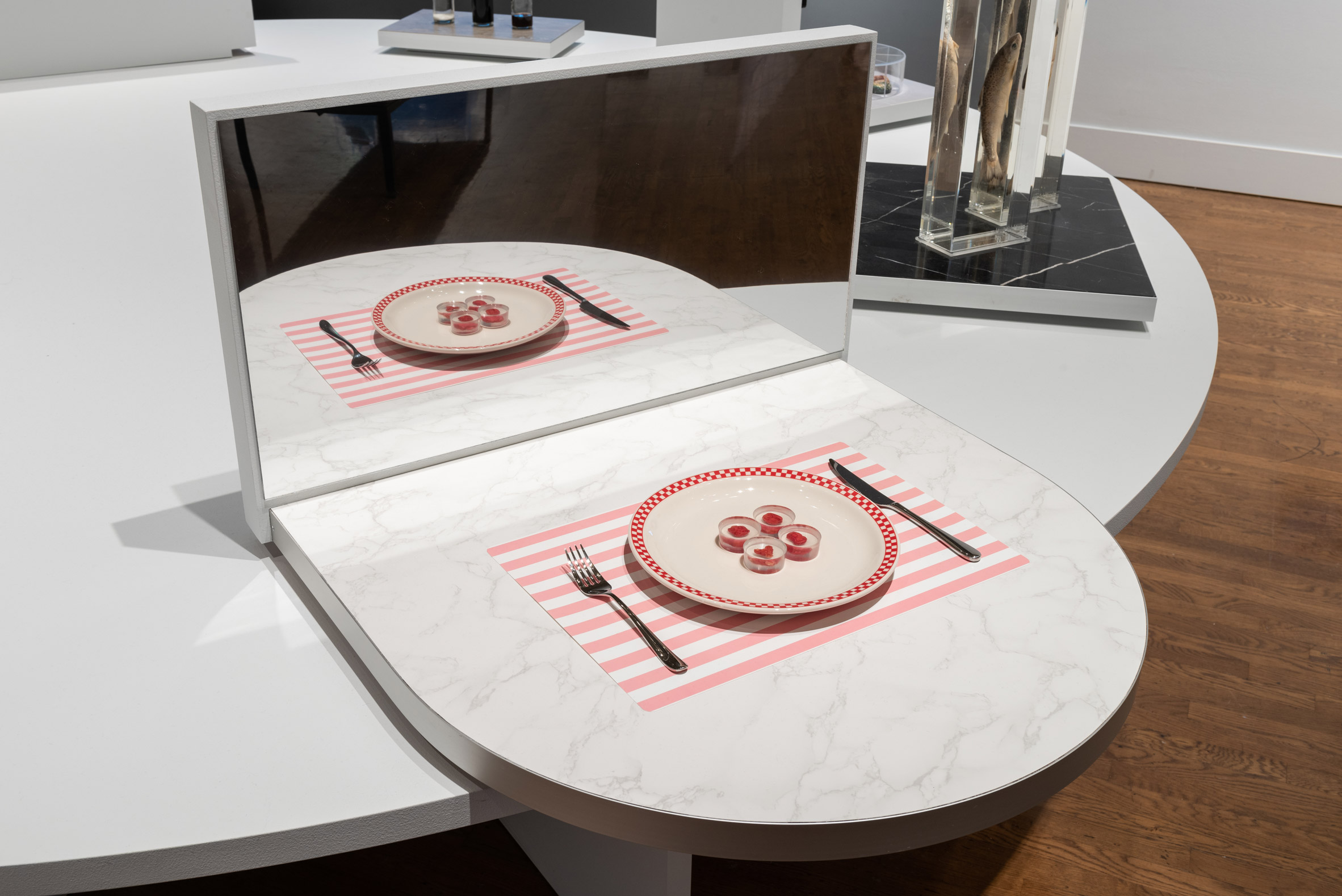 The steak grown from human cells by Andrew Pelling, Orkan Telhan and Grace Knight on display as part of Unlikely Futures at the Philadelphia Museum of Art