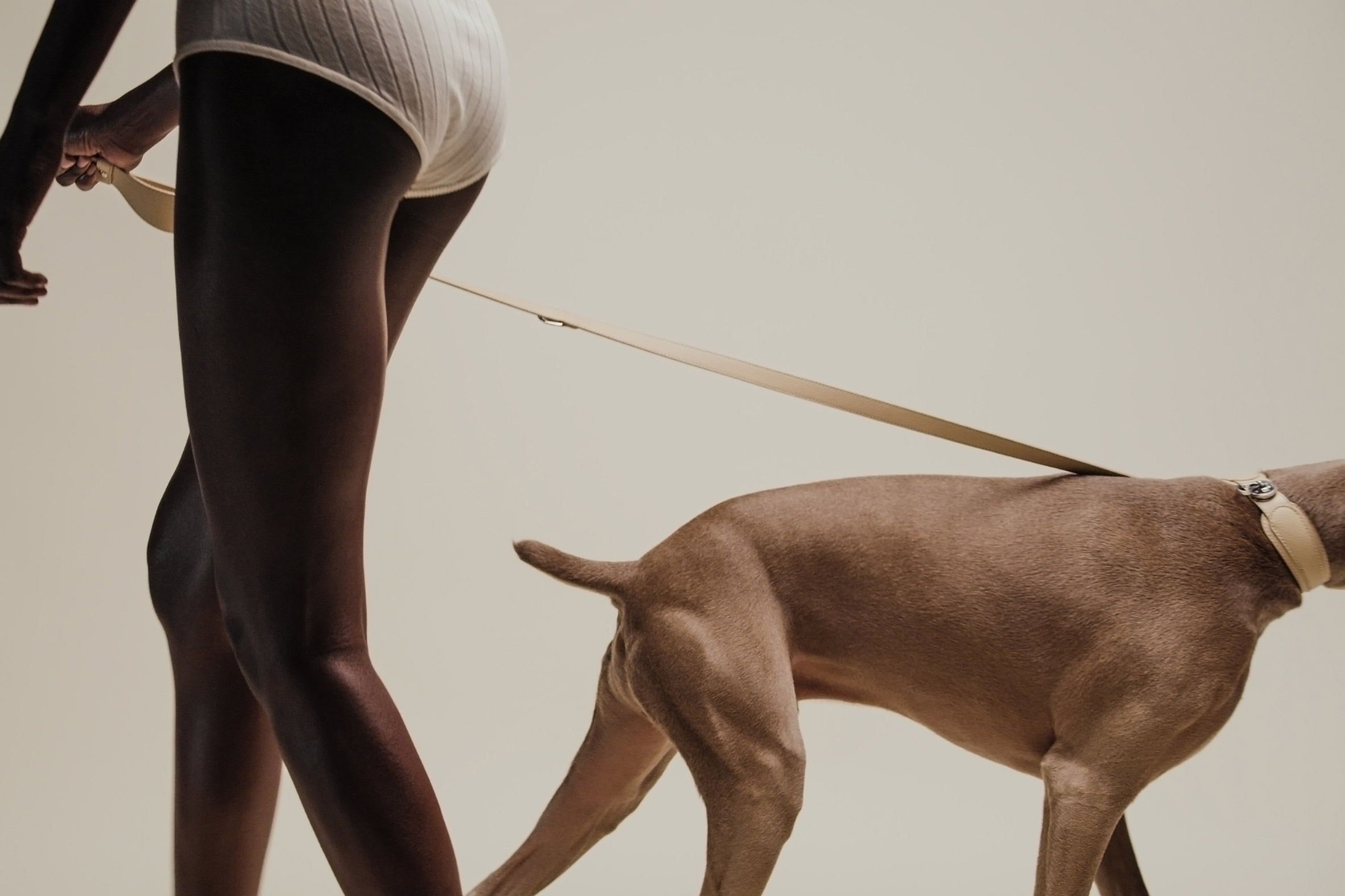The Tascher leash and Dórro collar by Pagerie