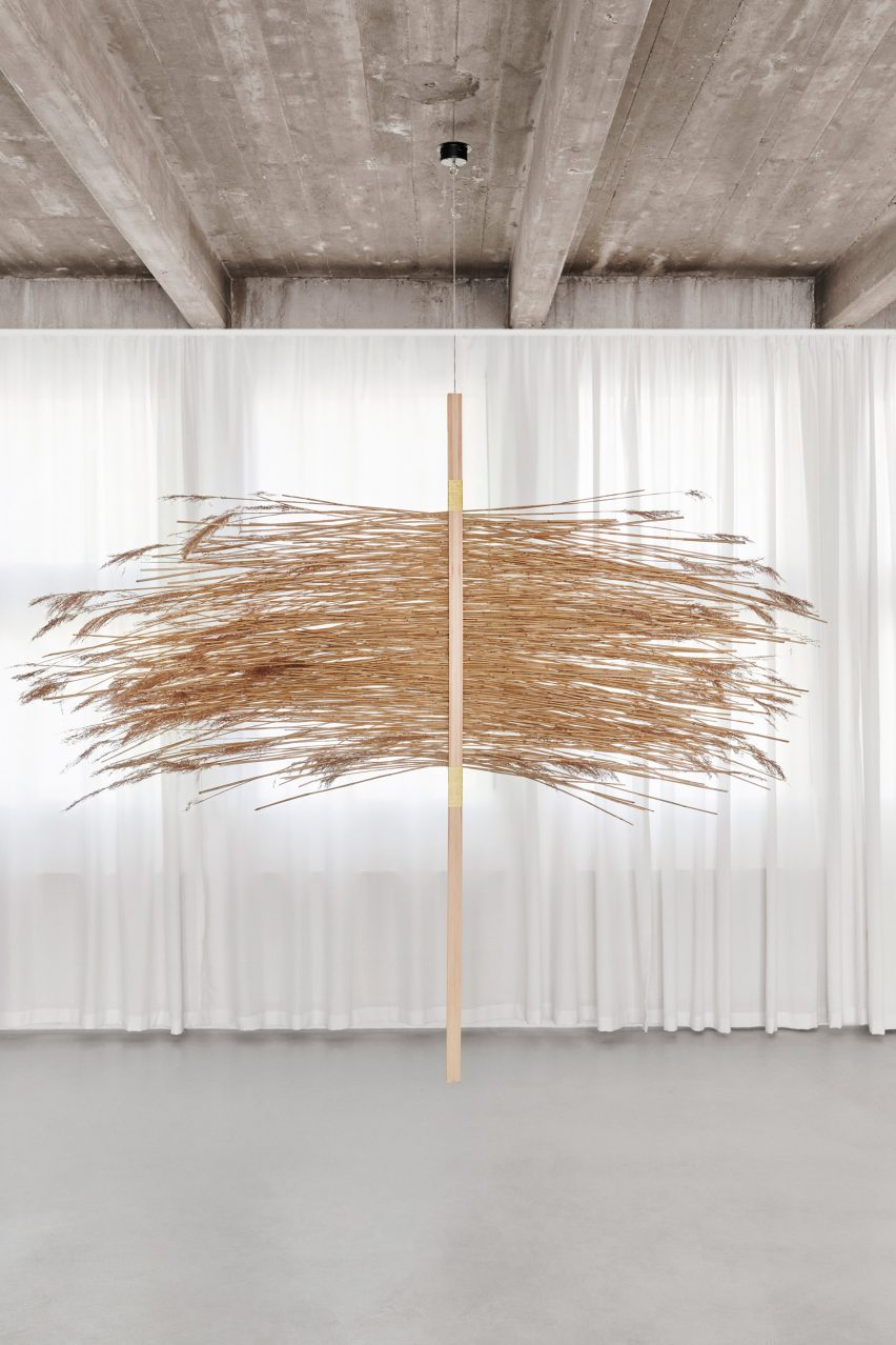 Reed, pine wood and cactus fibre sculpture