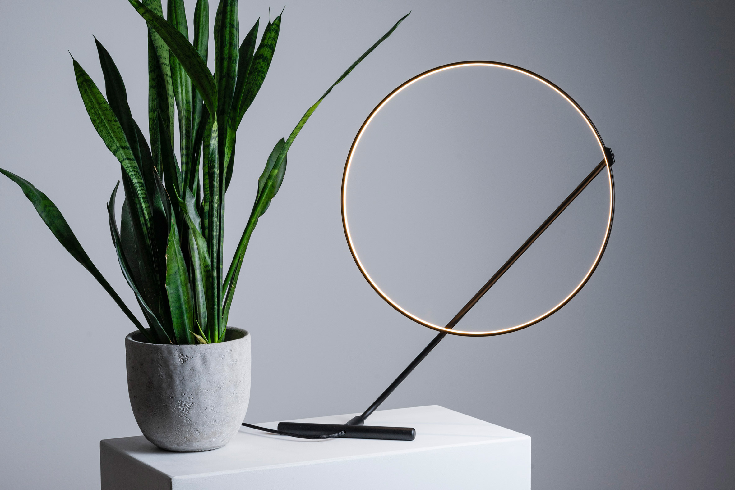 Poise lamp can be adjusted by hand