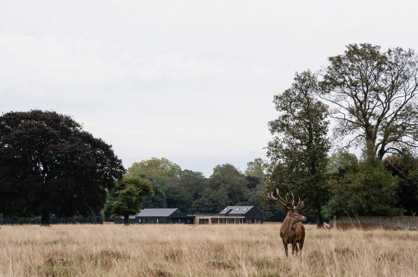 Teddington Cricket Club in Bushy Park