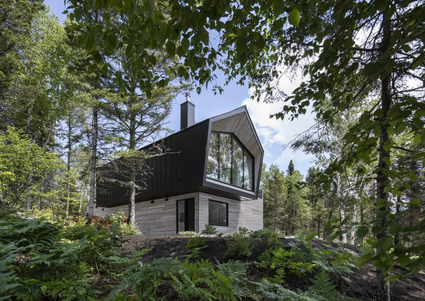 Forest around Le Littoral by Architecture 49