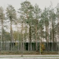 Trees surrounding Loenen National War Cemetery and the new National Veterans Cemetery