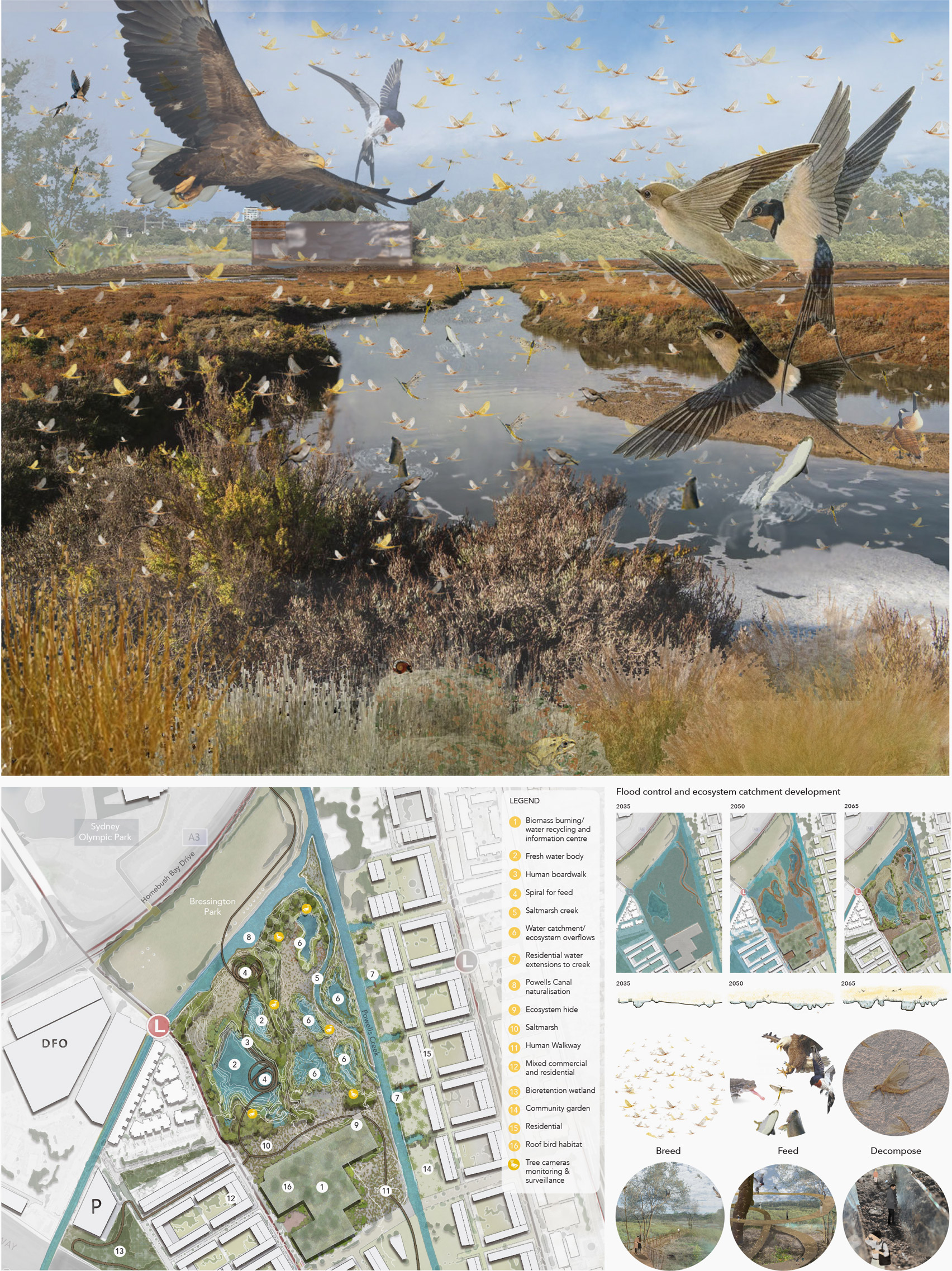 Landscape architecture drawings by UNSW Sydney student Ranine Hamed