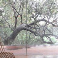 Gerhard Heusch Oak Pass Residence Beverly Hills surrounding oak tree
