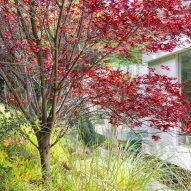 Gerhard Heusch Oak Pass Residence Beverly Hills surrounding landscape