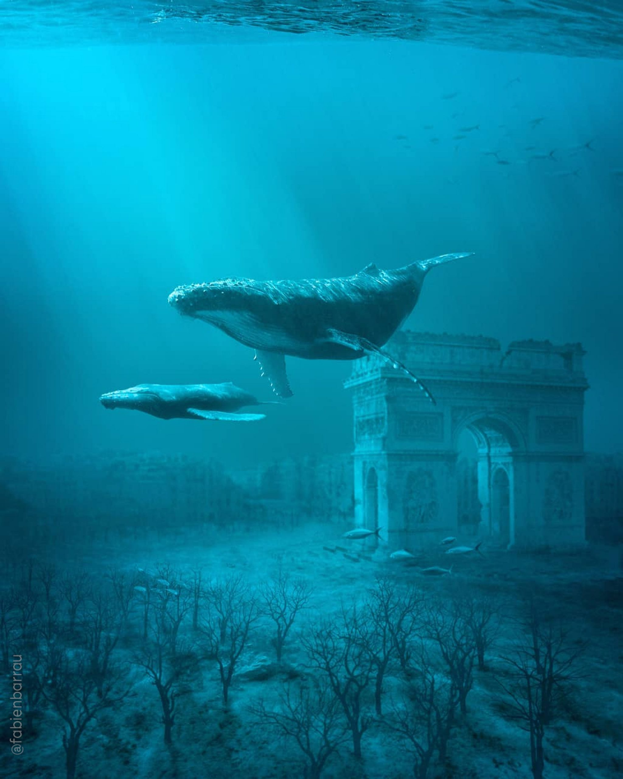 Paris and whales from News from the Future by Fabien Barrau