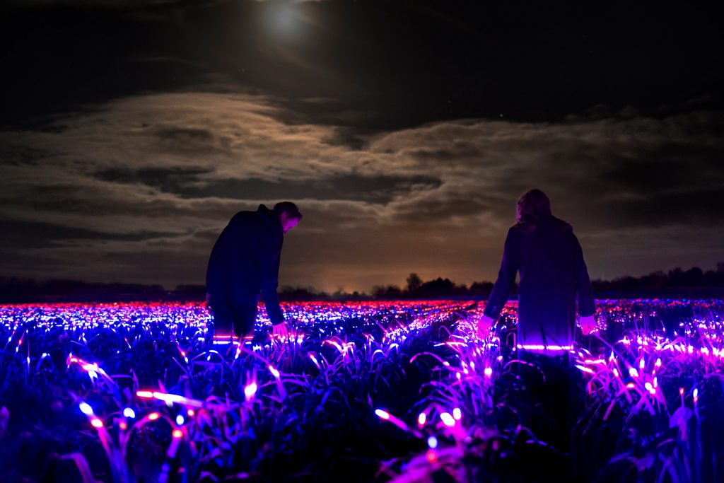 """Daan Roosegaarde uses """"light recipes"""" to show how agriculture could be more sustainable"""