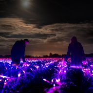 "Daan Roosegaarde uses ""light recipes"" to show how agriculture could be more sustainable"