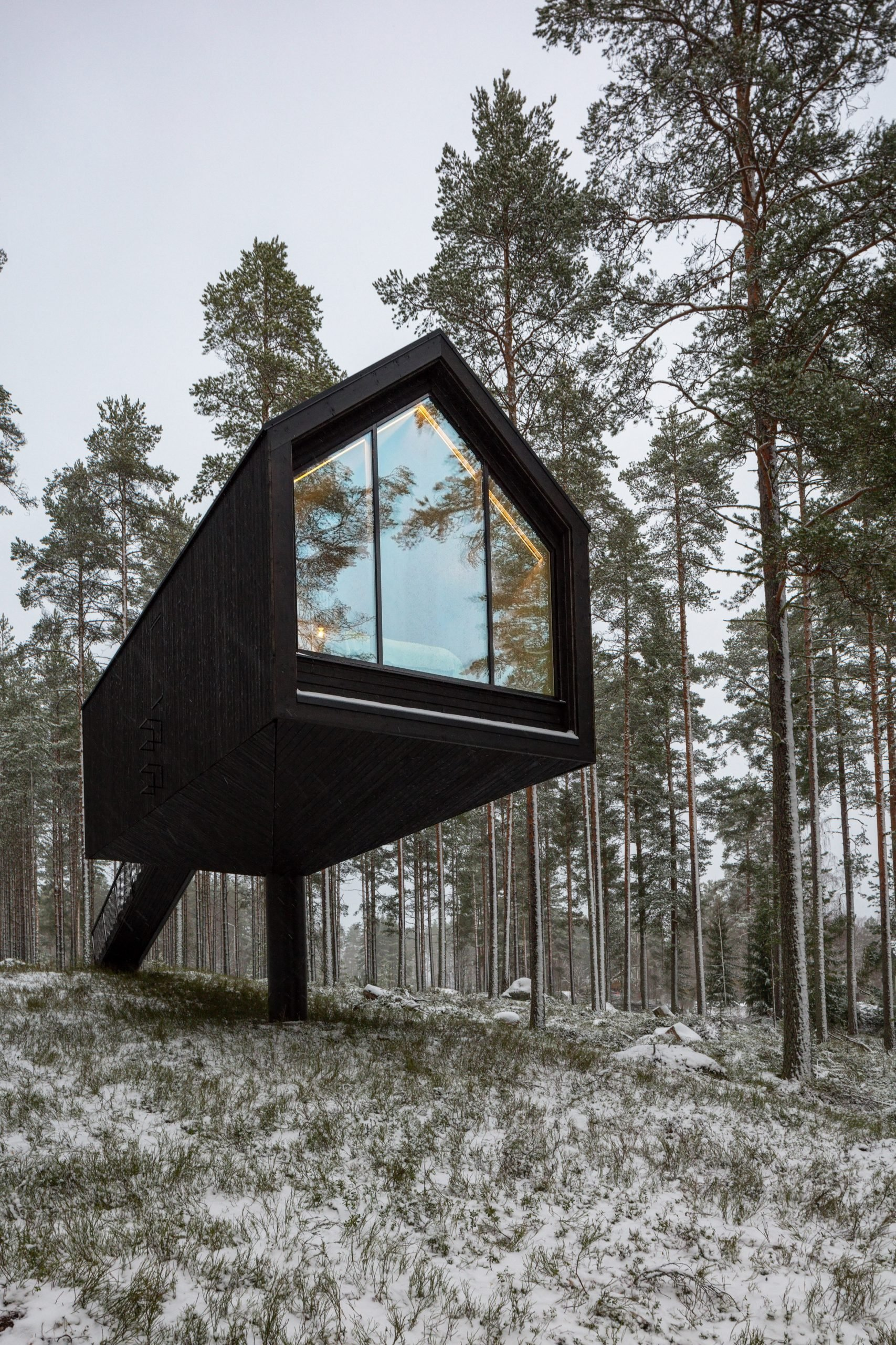A woodland cabin clad in black-painted wood