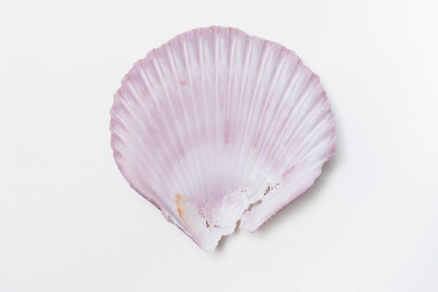 Seashell at R for Repair