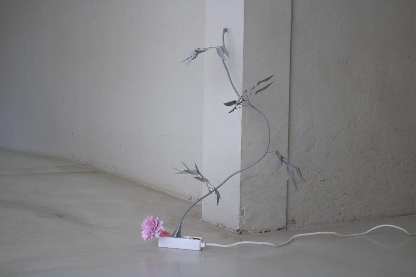 Weeds by Jeroen van Kempen from the ArtEz school show