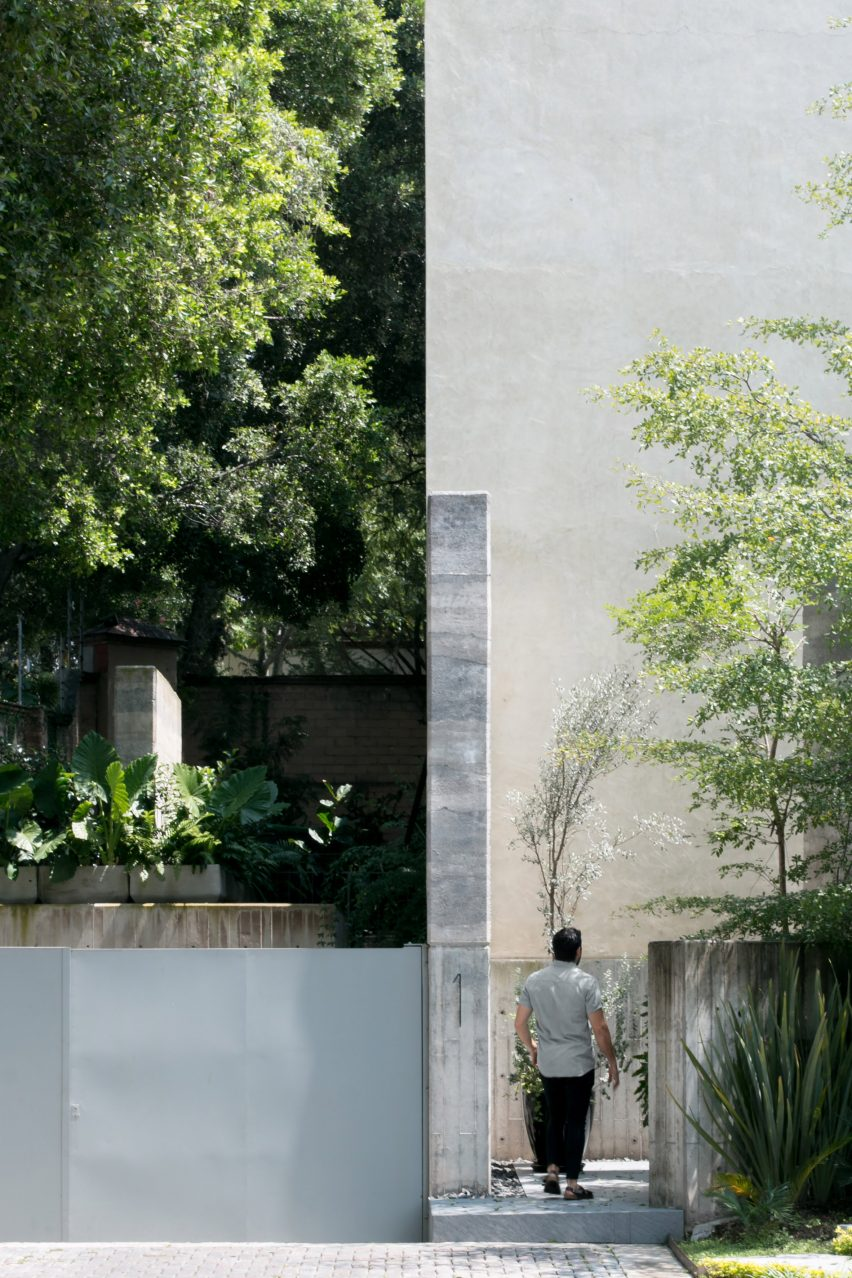 Plants feature in house in Mexico by V Taller