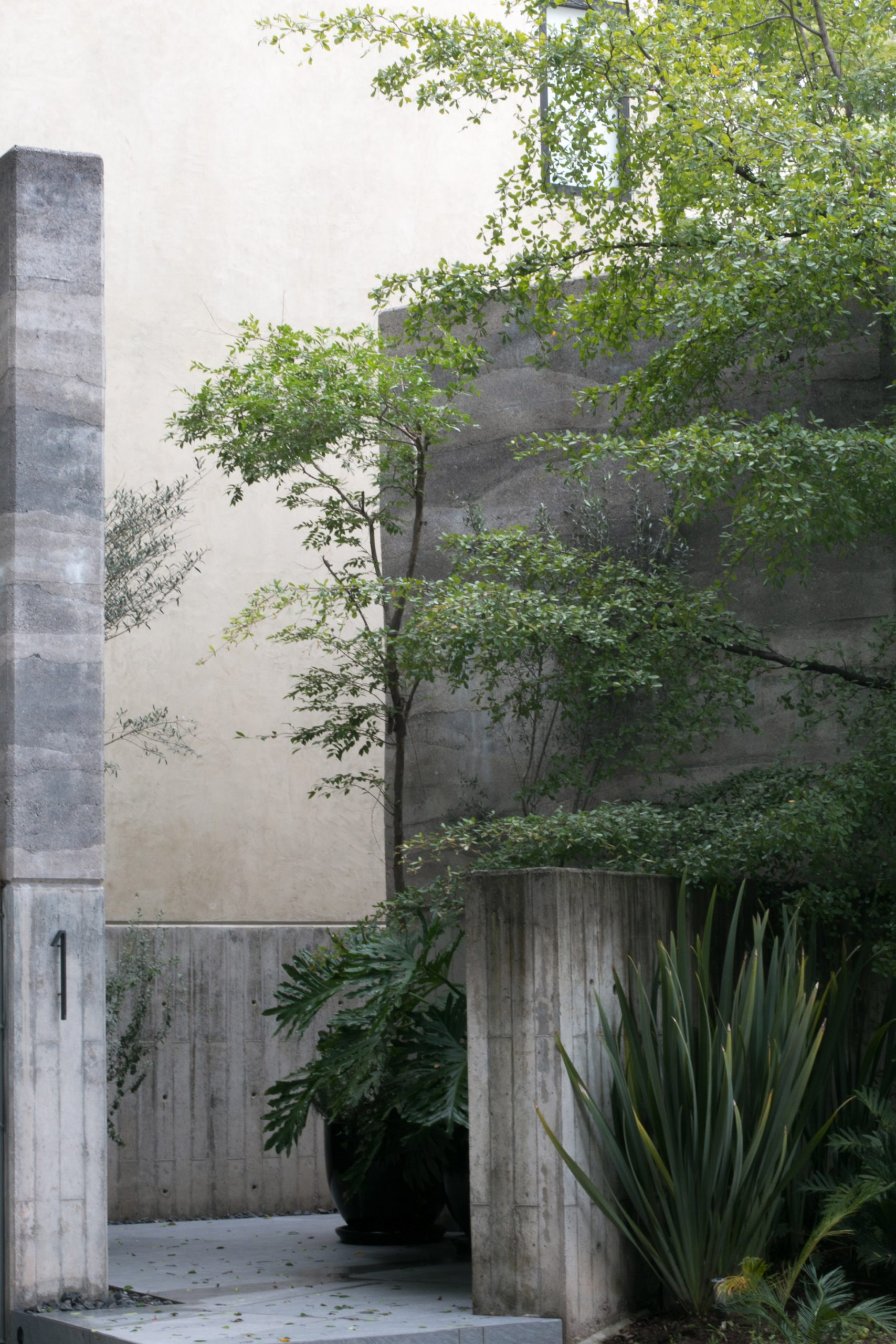 Concrete and stucco walls on Casa Duraznos