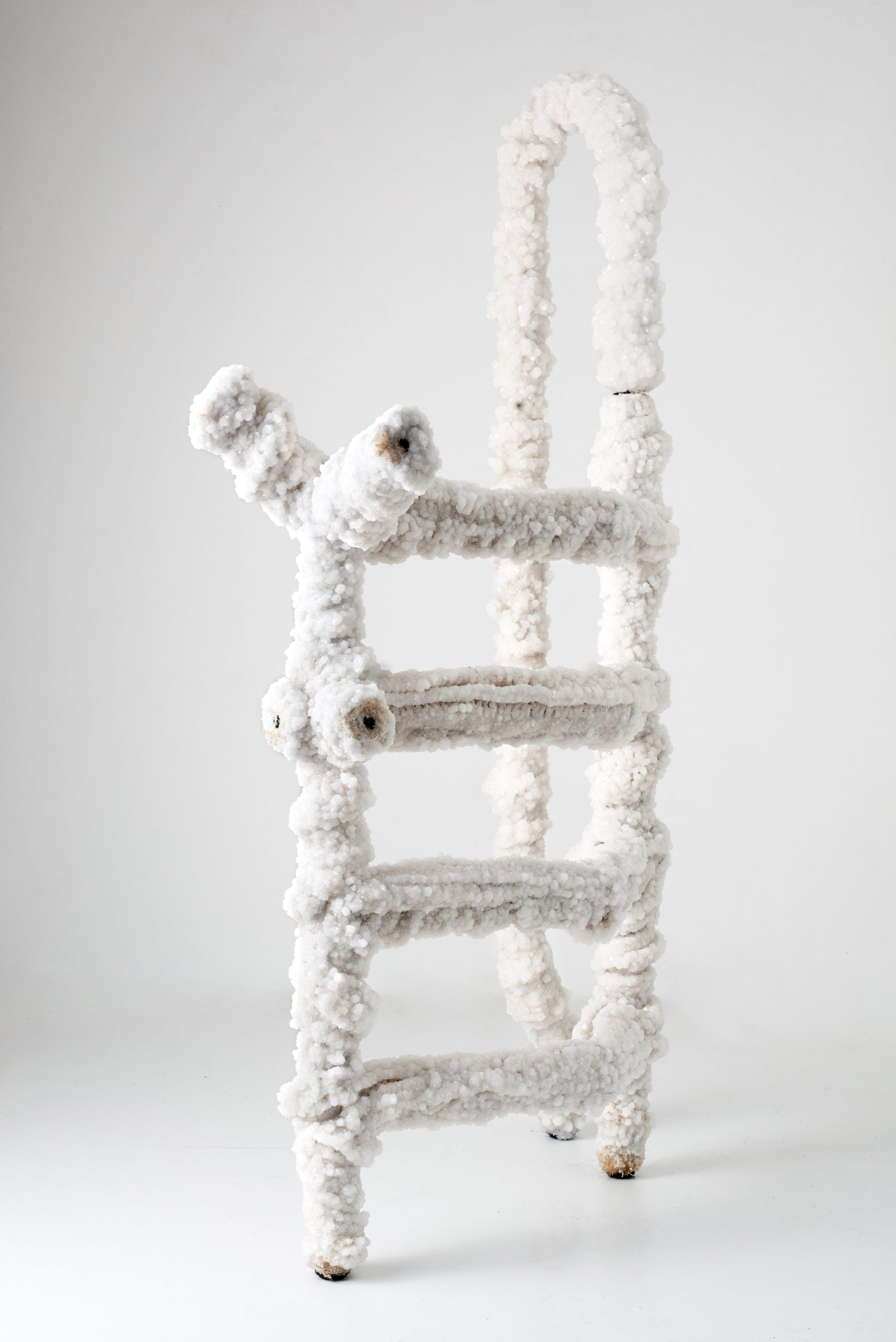 A ladder made from salt crystals