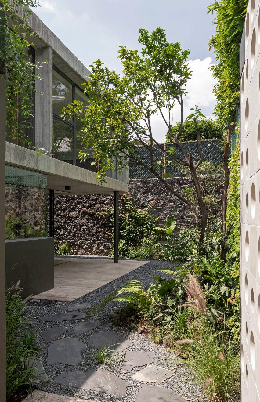 Garden of a house in Mexico City