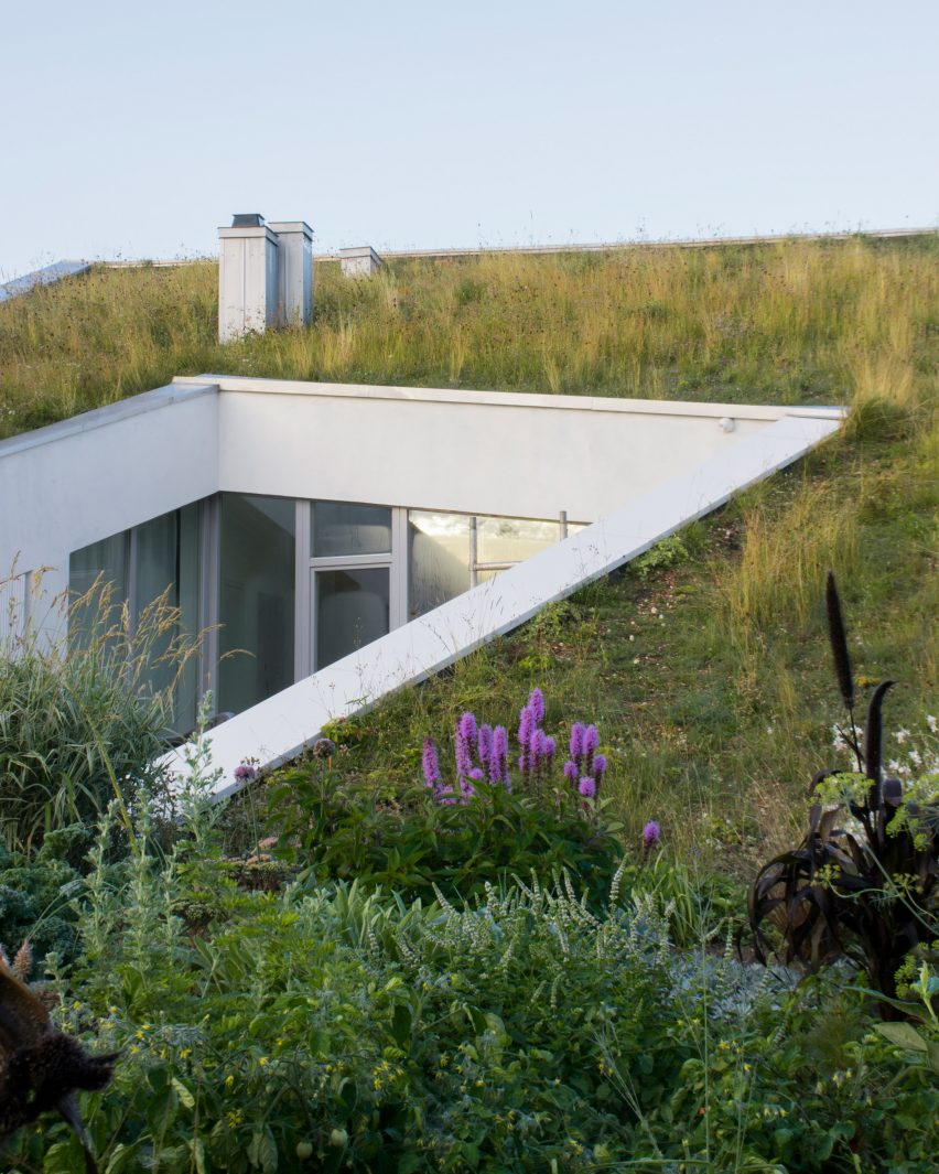House and the River by After Party green roof