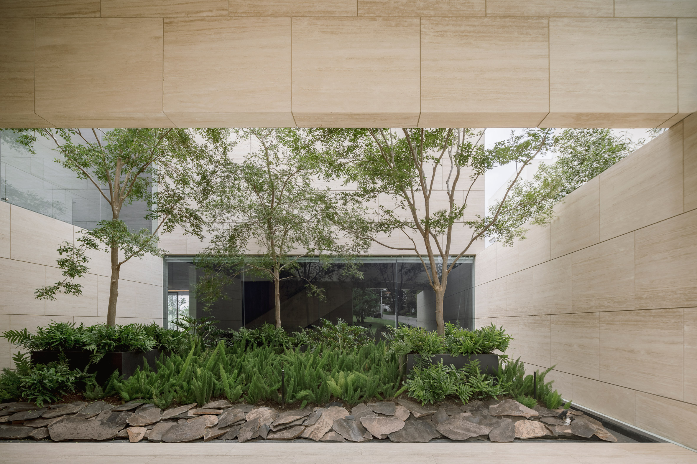 Garden of Casa ZTG in Guadalajara by 1540 Arquitectura
