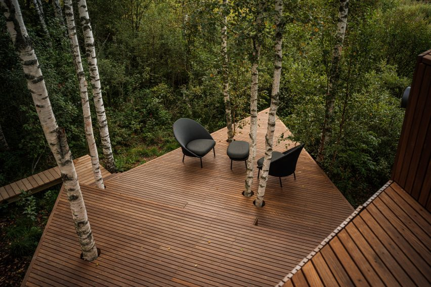 Dark wooden decking within woodland