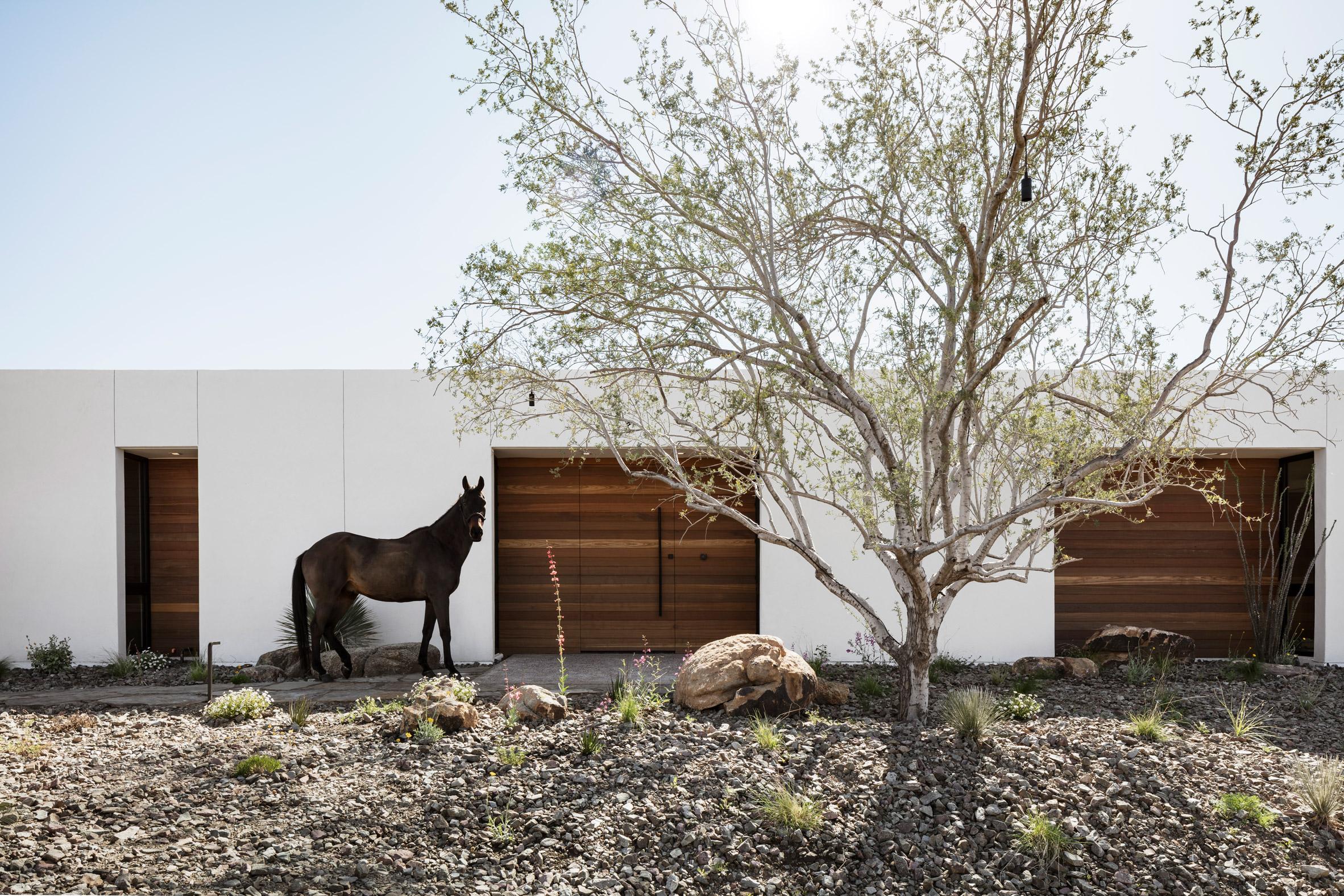 White stucco walls of house in Arizona