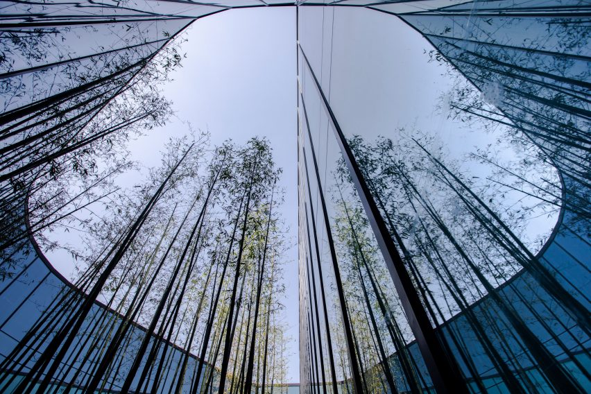 A tree-lined atrium