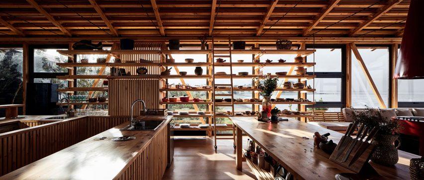 Pine interiors of Punta Chilen extension