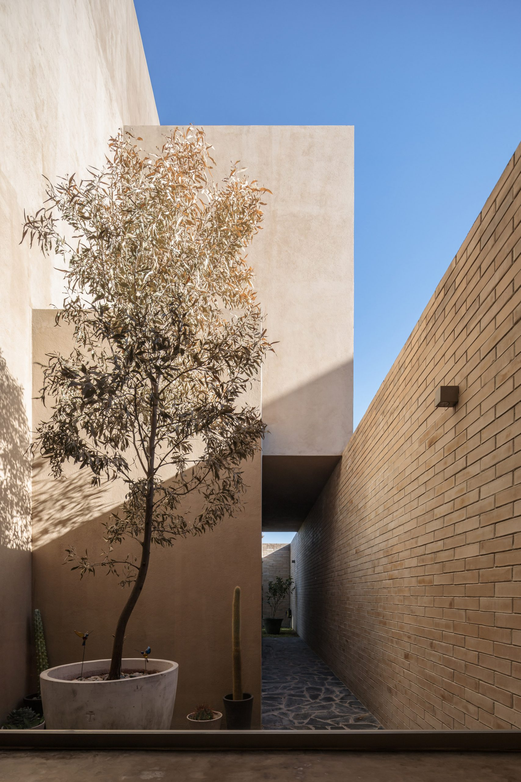 Courtyard of Yavia House in Mexico