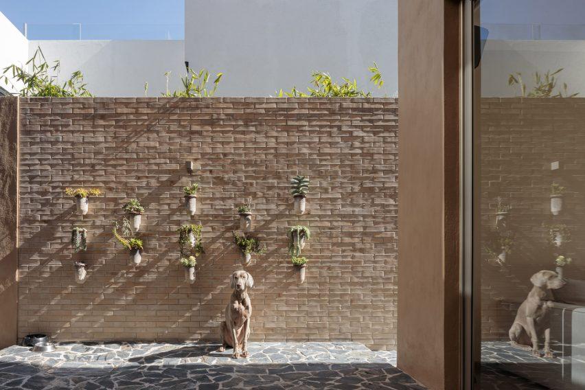 Casa Yavia Patio Intersticial Architectura