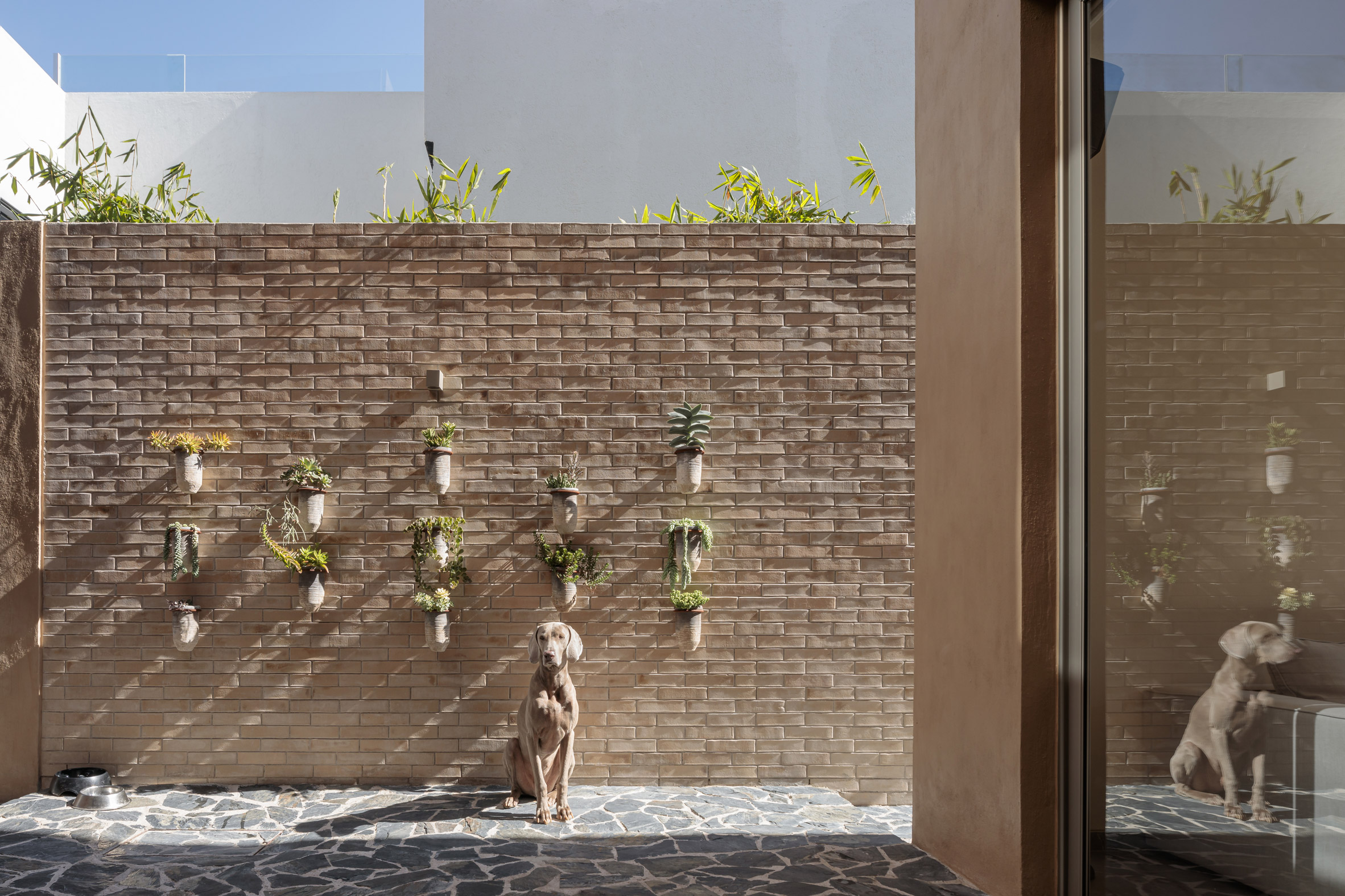 Courtyard of Yavia House by Intersticial Arquitectura