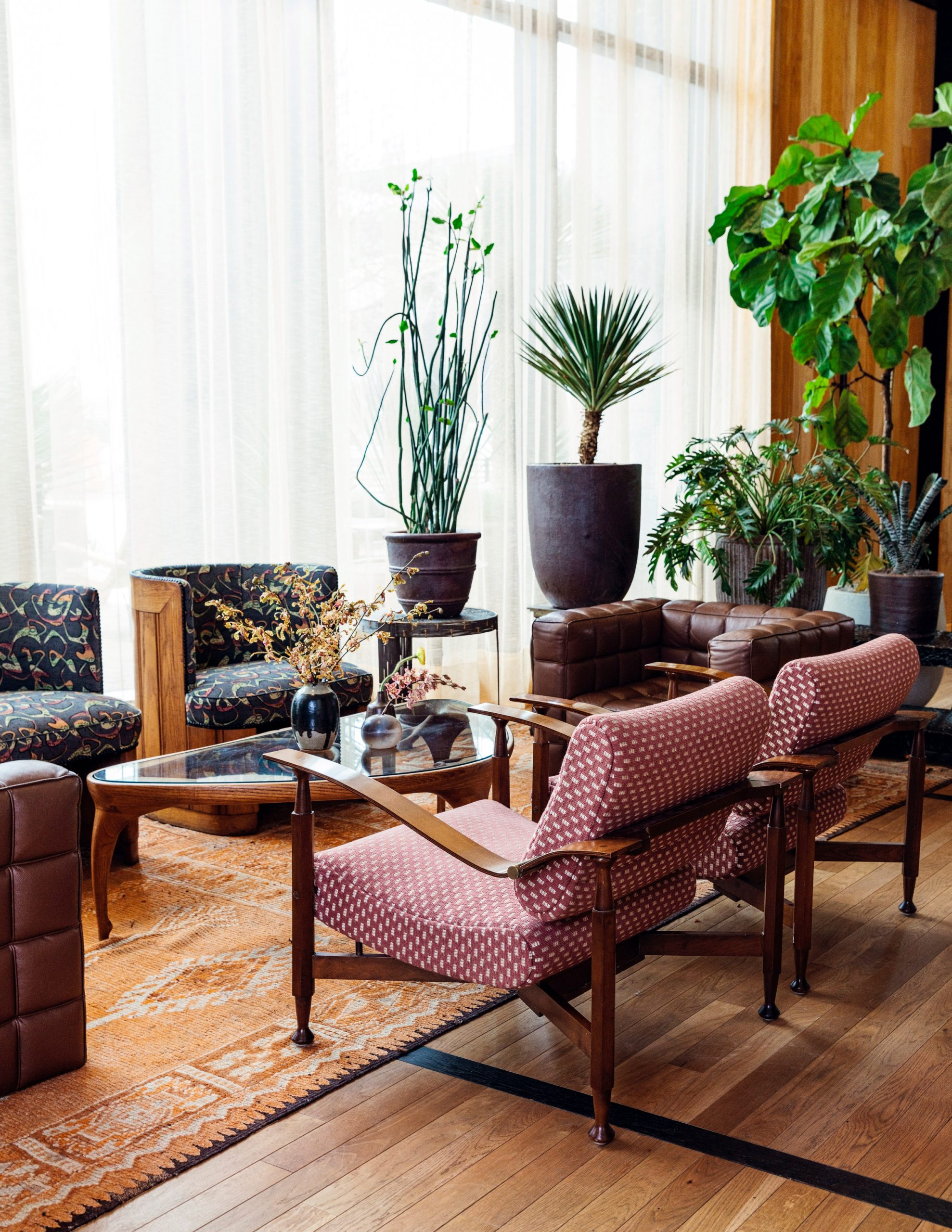 Pot plants in Austin Proper Hotel and Residences