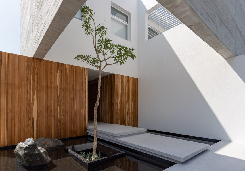 Pool and tree of house in Ecuador by Orense Arquitectos