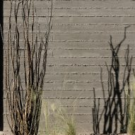Shadows from local vegetation