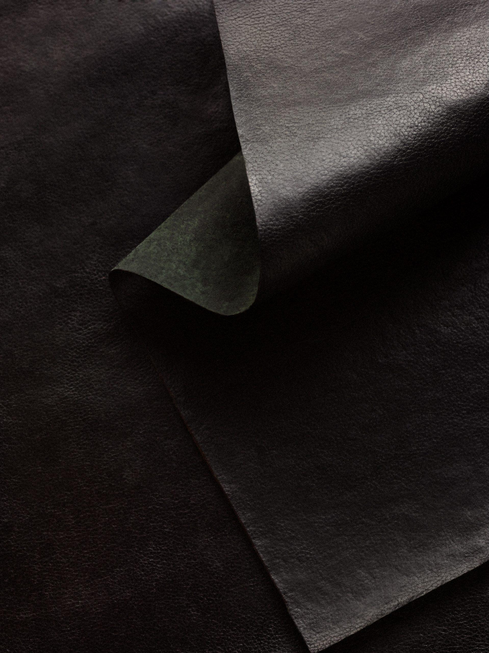 Reishi mycelium leather in black